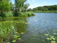 Озеро Прорва. Кирсанов