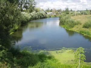 Течет река Пурсовка.