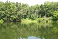 Река Ворона. Кирсанов