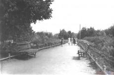 Алея сквера города Кирсанова. 1954 год