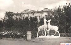 В городском сквере, скульптура олней. Фото 1957 год